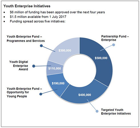 Youth Enterprise Initiatives